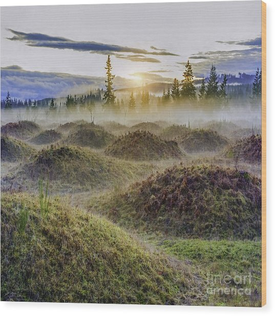 Mima Mounds Mist Wood Print