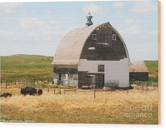 Minden Nebraska Old Farm And Barn Wood Print