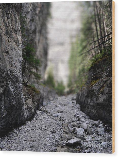 Mini Canyon Wood Print