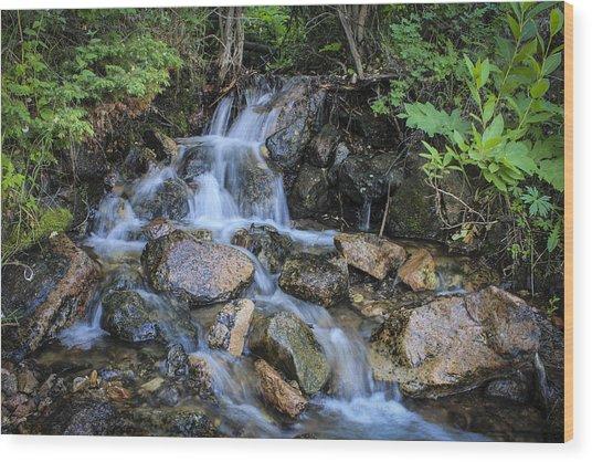 Mini Falls Wood Print