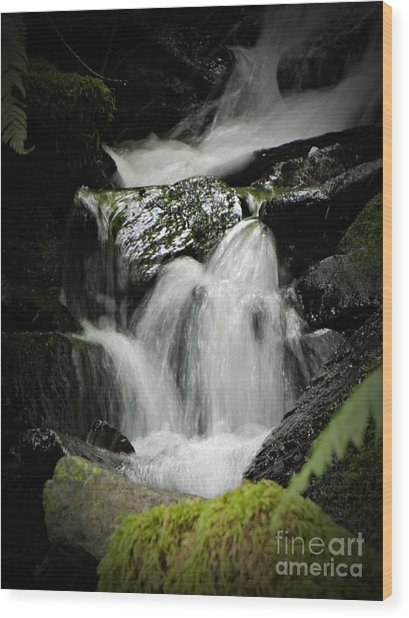Mini Waterfall 2 Wood Print