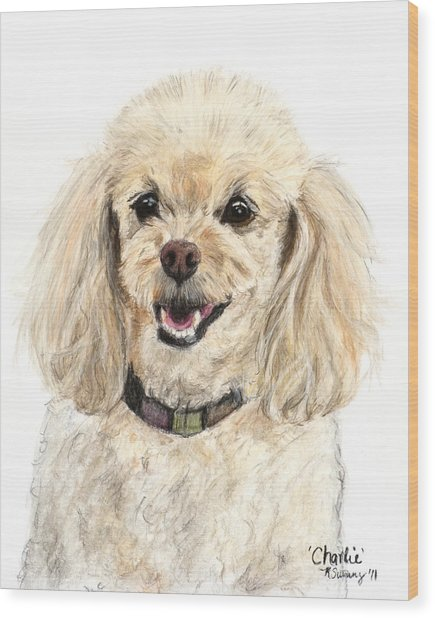 Miniature Poodle Painting Champagne Wood Print