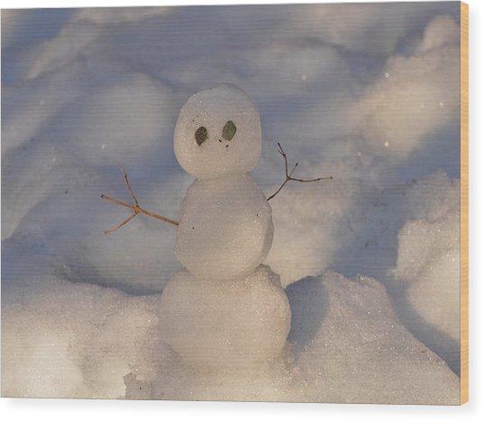 Miniature Snowman Landscape Wood Print