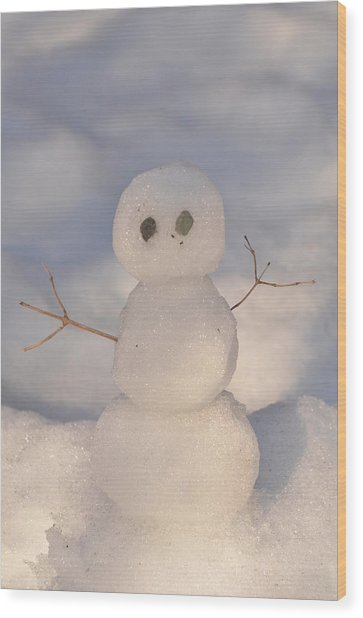 Miniature Snowman Portrait Wood Print