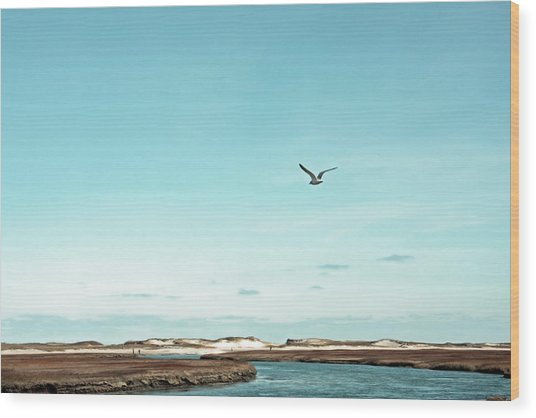 Minimalist Blue And Brown Seascape Wood Print