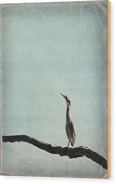 Minimalist Vintage Inspired Green Heron On Pale Blue Sky Wood Print