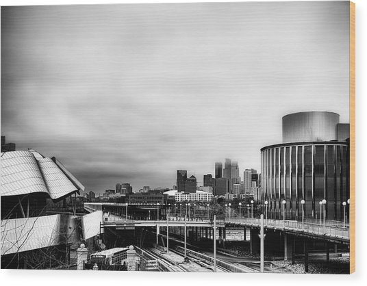 Minneapolis From The University Of Minnesota Wood Print