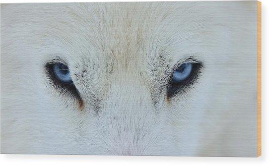 Mirada Azul Wood Print