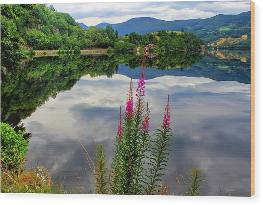 Mirror Lake Bjorheimsvatnet In Rogaland  Wood Print