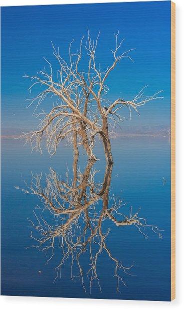 Mirror Mirror Wood Print