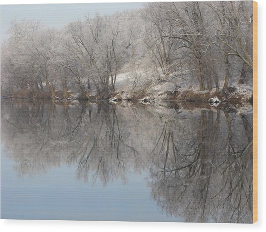 Mirrored Image Wood Print by Laura Corebello