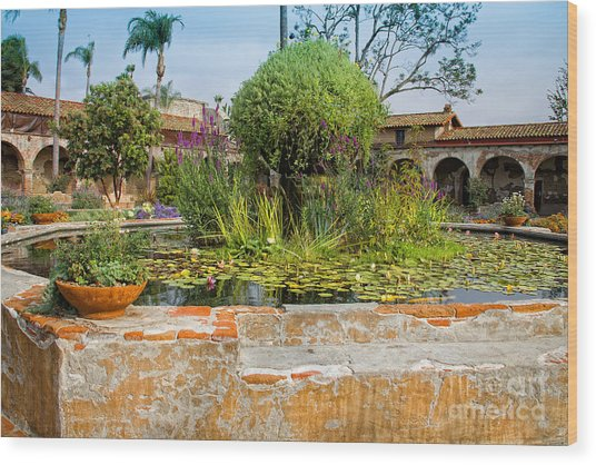 Mission Lilly Pond Wood Print