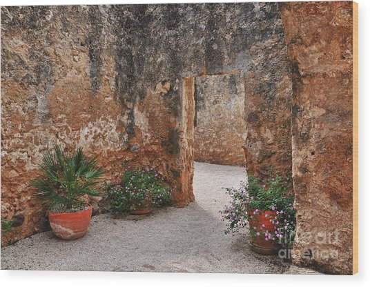 Mission San Jose At San Antonio Texas Wood Print