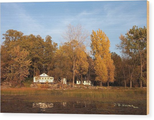 Missisquoi Bay Camps Wood Print