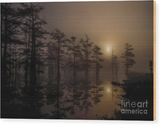 Wood Print featuring the photograph Mississippi Foggy Delta Swamp At Sunrise by T Lowry Wilson