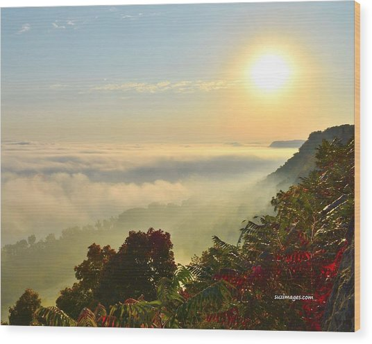 Mississippi River Fog Wood Print