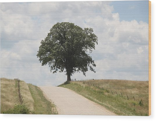 Missouri Road Wood Print