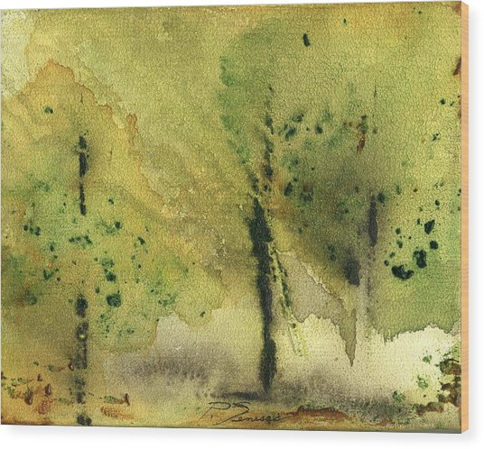 Mist And Morning Wood Print