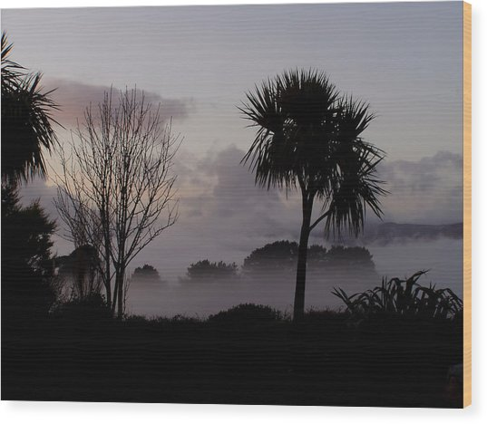 Mist And Palmtree Wood Print