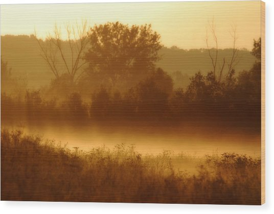 Mist Burning Off The Field Wood Print