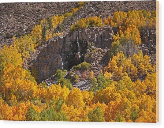 Mist Falls And Aspen In Autumn Wood Print