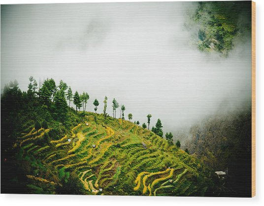 Mist In Mountain Himalayas Color Wood Print