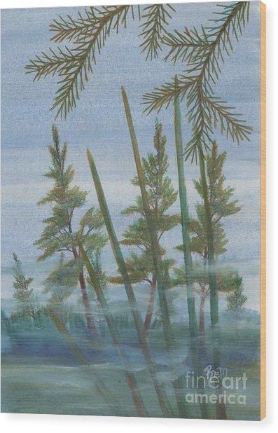 Mist In The Marsh Wood Print by Robert Meszaros