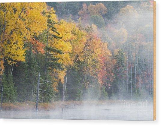 Mist Over Fly Pond Wood Print