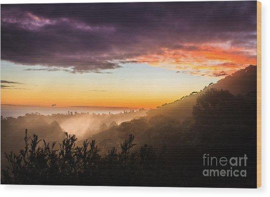 Mist Rising At Dusk Wood Print