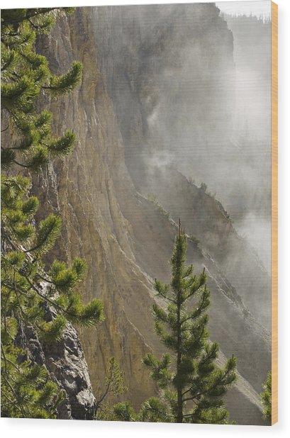 Misty Canyon  Wood Print