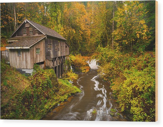 Misty Creek Wood Print