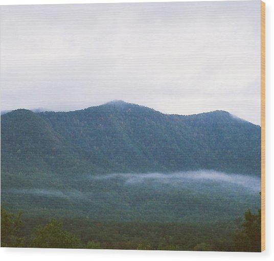 Misty Wood Print by Cynthia Syracuse