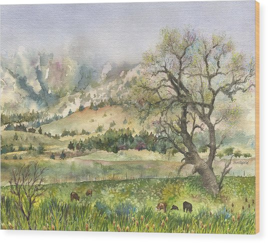 Misty Flatirons Wood Print