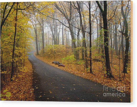 Misty Minnesota Mile Wood Print
