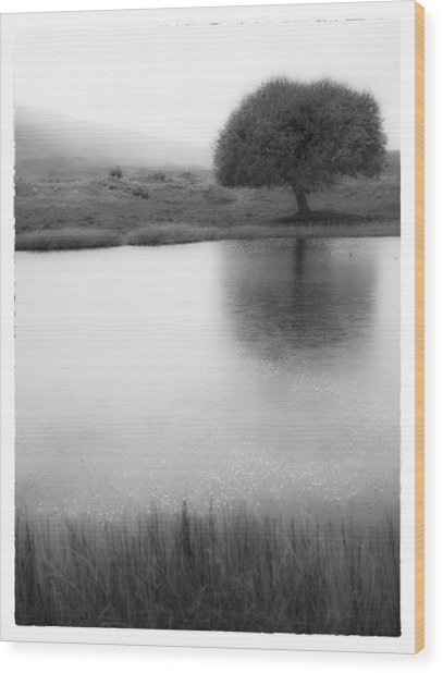 Misty Morning By The Pond Wood Print by Cristel Mol-Dellepoort
