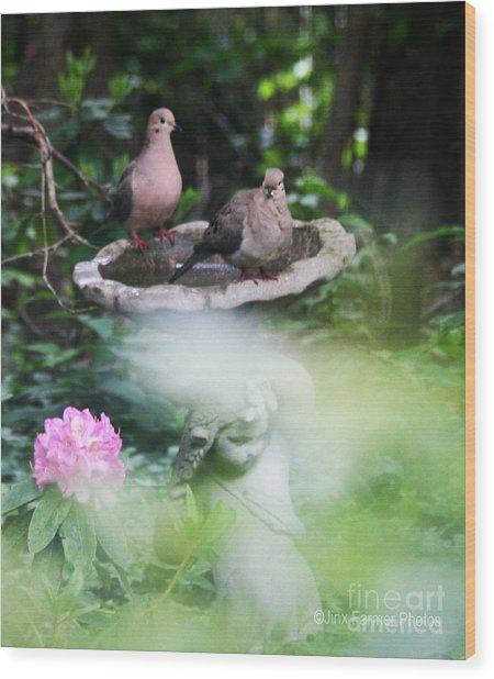 Misty Morning Doves Wood Print by Jinx Farmer