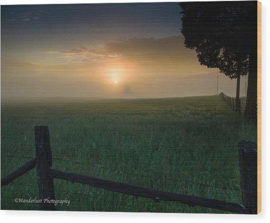 Misty Morning Hop Wood Print by Paul Herrmann