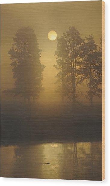 Misty Morning I Wood Print by Sandy Sisti