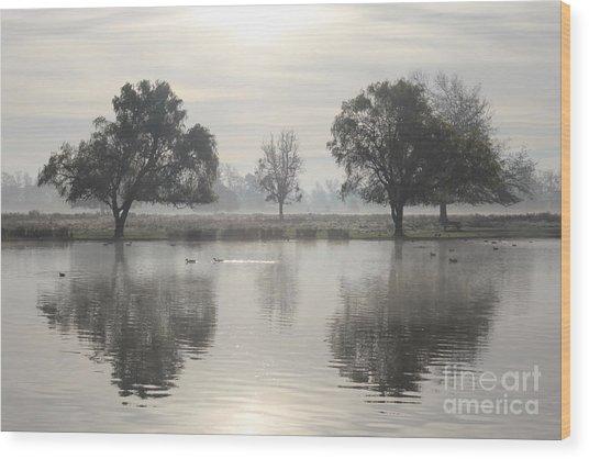 Misty Morning In Bushy Park London 2 Wood Print