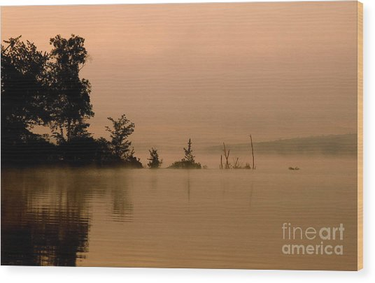 Misty Morning Solitude  Wood Print