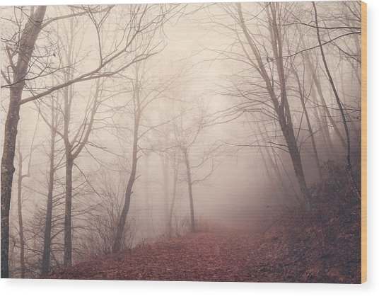 Misty Path Wood Print