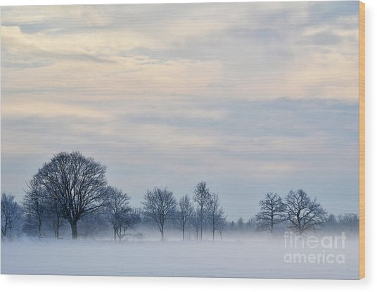 Misty Winter Day Wood Print