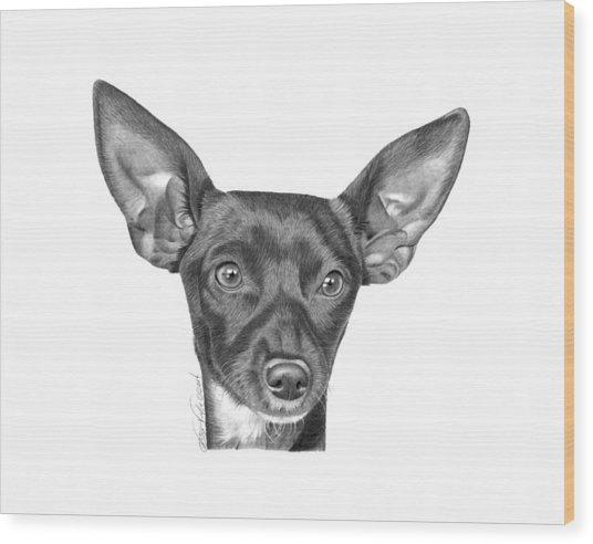 Mocha -036 Wood Print