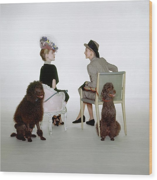 Models Sitting With Poodles Wood Print