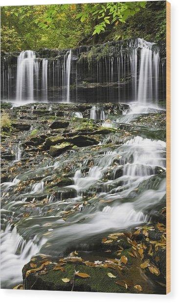 Mohawk Falls 2 Wood Print