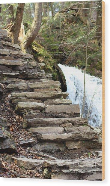 Mohawk Falls Steps Wood Print