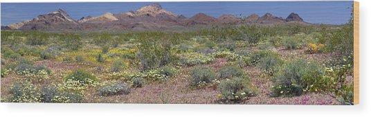 Mojave Desert Floral Display Wood Print