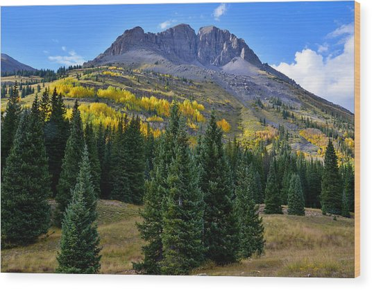 Molas Pass Fall Color Wood Print