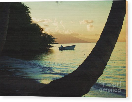 Molokai Beach Wood Print