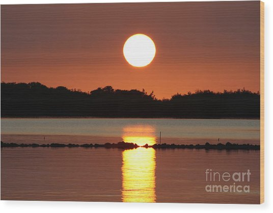 Molokai Fishpond Wood Print